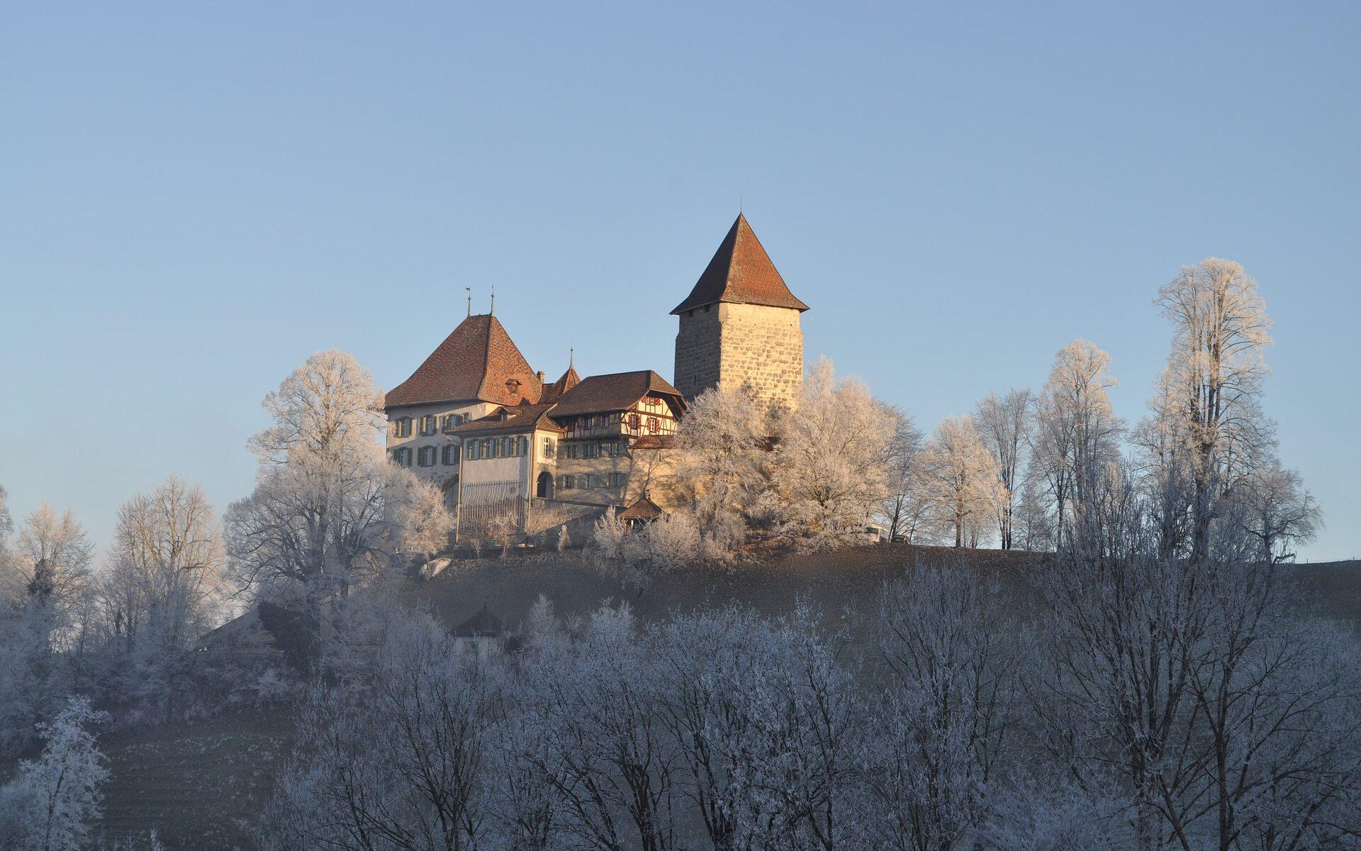 Übersetzungsbüro Trachselwald